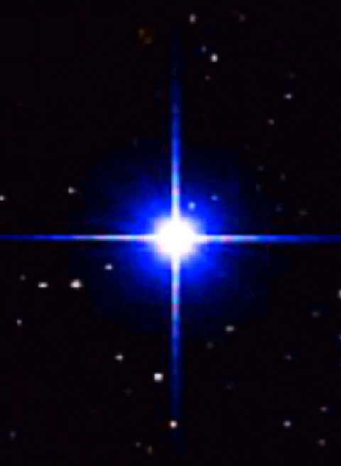 (※レグルス1等星) ラテン語:レックス『王』が語源のレグルスは、...  獅子座の詳細